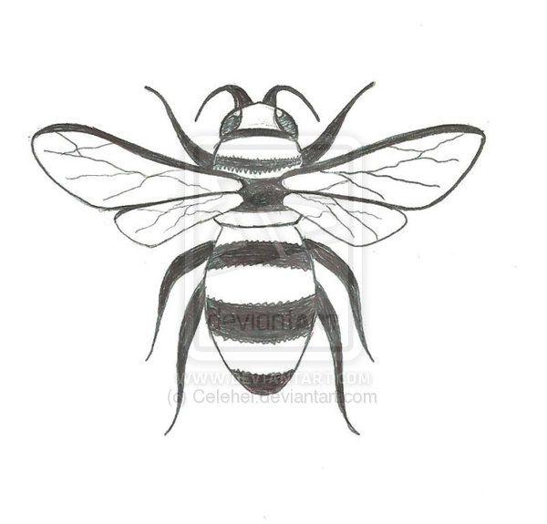 43 best Bee Outline Ta...