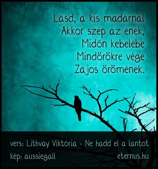 Lithvay Viktória #idézet