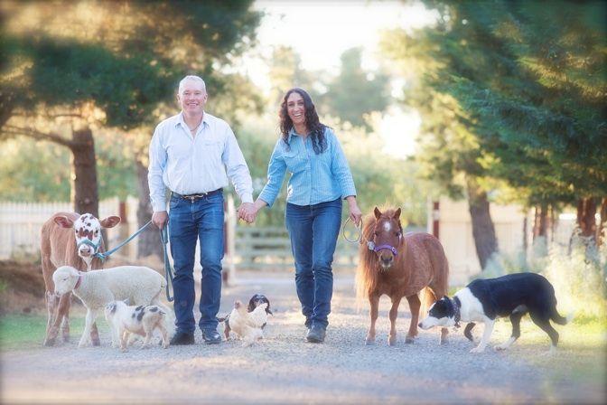 Bendigo Farm Stay Bendigo, Victoria