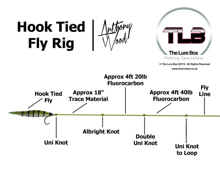 Hook Tied Fly Rig Diagram