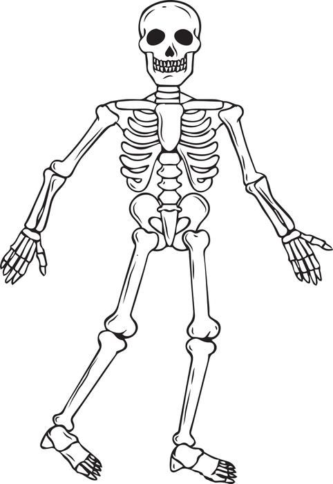 skeleton halloween coloring page 2