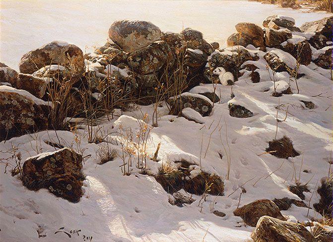 Winter Ermine