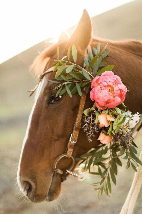 Horse with Floral Bridle Decor | Jeff Brummett Visuals | http://heyweddinglady.com/rustic-glam-ranch-wedding-inspiration/
