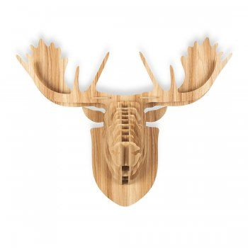 Safari Life Wood Safari Trophy Animal Head - Moose - Safari Life from Cult Furniture UK