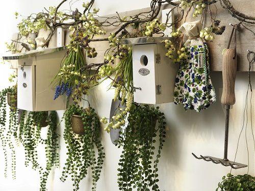 25 beste idee n over tuingereedschap op pinterest tuin gereedschap organisatie en schuren - Ideeen deco tienerkamer ...