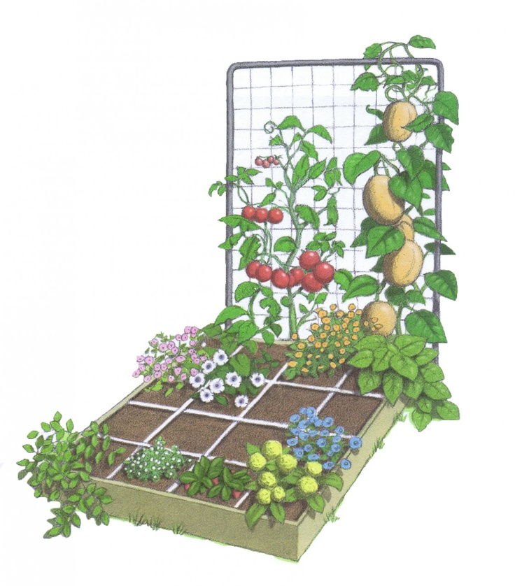 Square Foot Garden With Tomato Tower Gardening Pinterest