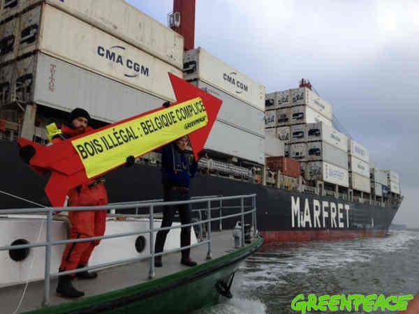 Du bois à haut risque amazonien arrive en Europe Une cargaison de bois très suspect en provenance de l'Amazonie brésilienne arrive en ce moment même en Europe, dans le port de Rotterdam.