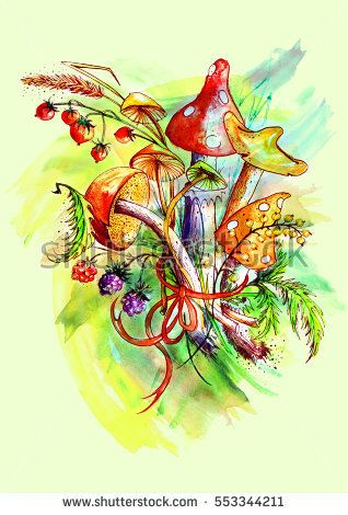 Bunch of mushrooms, berries, plants, herbs, over white background. Figure executed in watercolor. Russula, chanterelle, mushrooms and other fungi. The variant with a black outline and paint splatter.