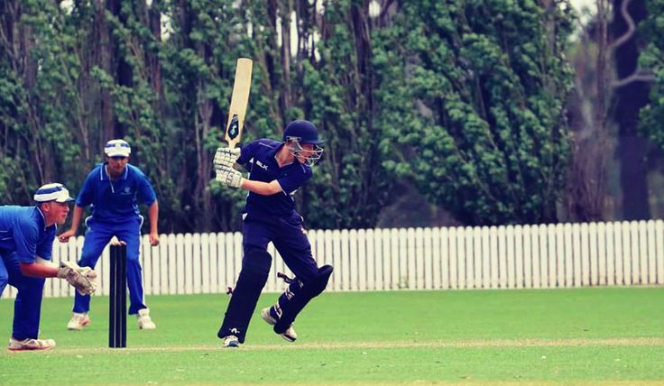 Our Story - Fantail Cricket