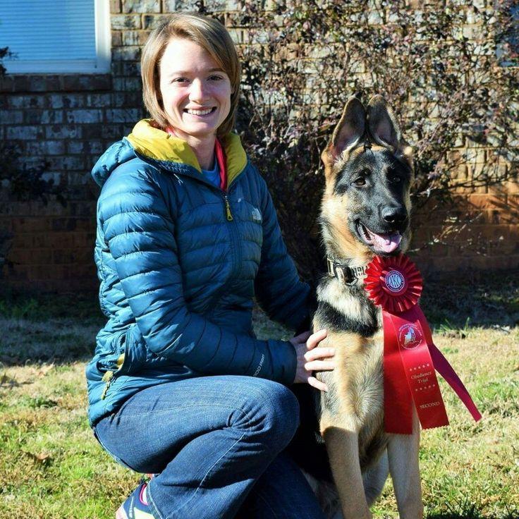 Starburst To Fame German shepherd dogs, Shepherd dog