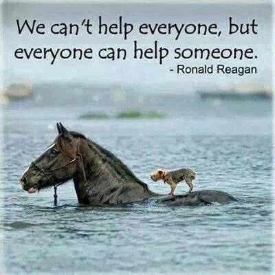 We cant help everyone, but everyone can help someone.