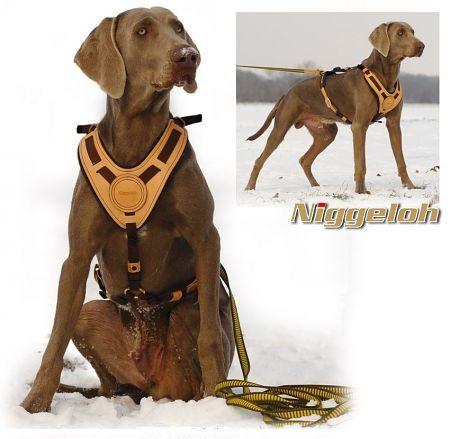 Niggeloh Mantrailing Hundegeschirr, Führgeschirr, S/M, L/XL mit Leine auf Wunsch