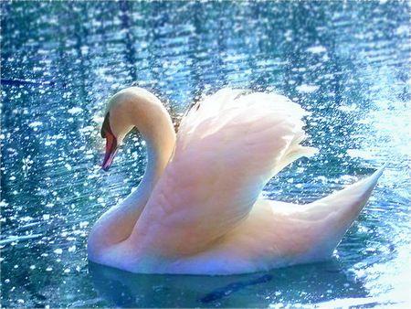 Aqua sparkle--she looks like she's having a very nice day :D