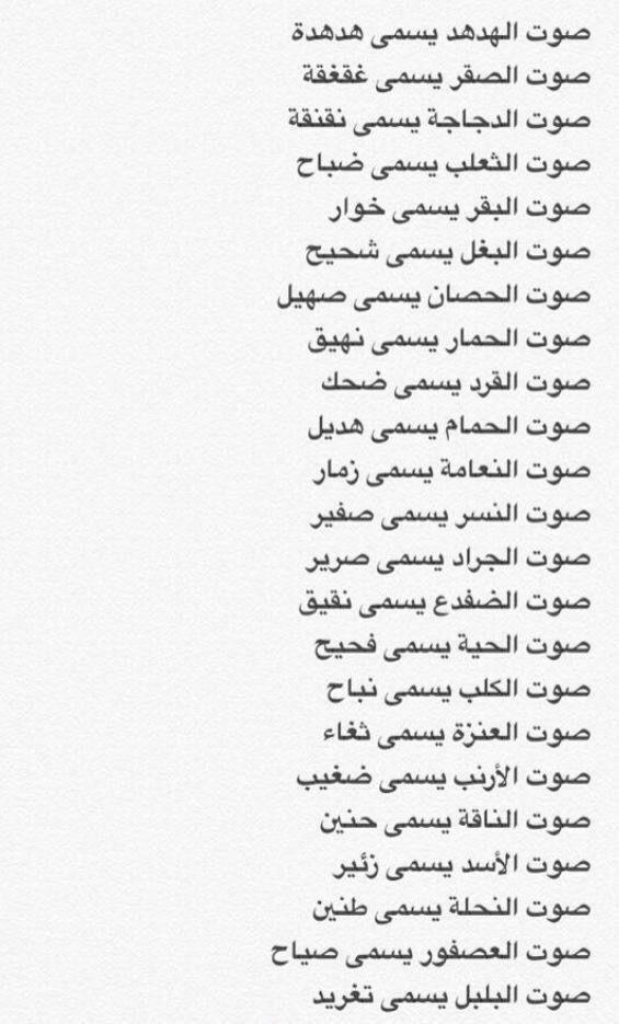 Pin By سألقاك يوما On Information Beautiful Arabic Words Learn Arabic Language Arabic Quotes