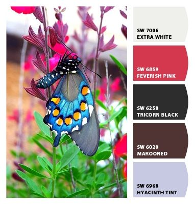 Paint colors from Chip It! by Sherwin-Williams 2