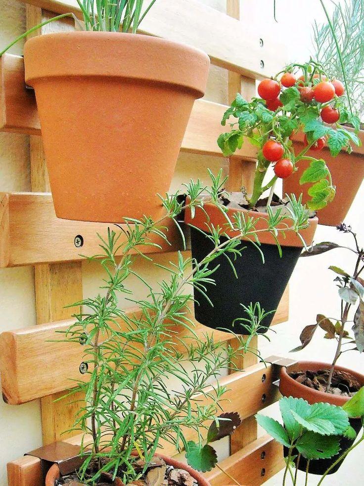 M s de 1000 ideas sobre macetas colgantes en pinterest for Decoracion jardin macetas