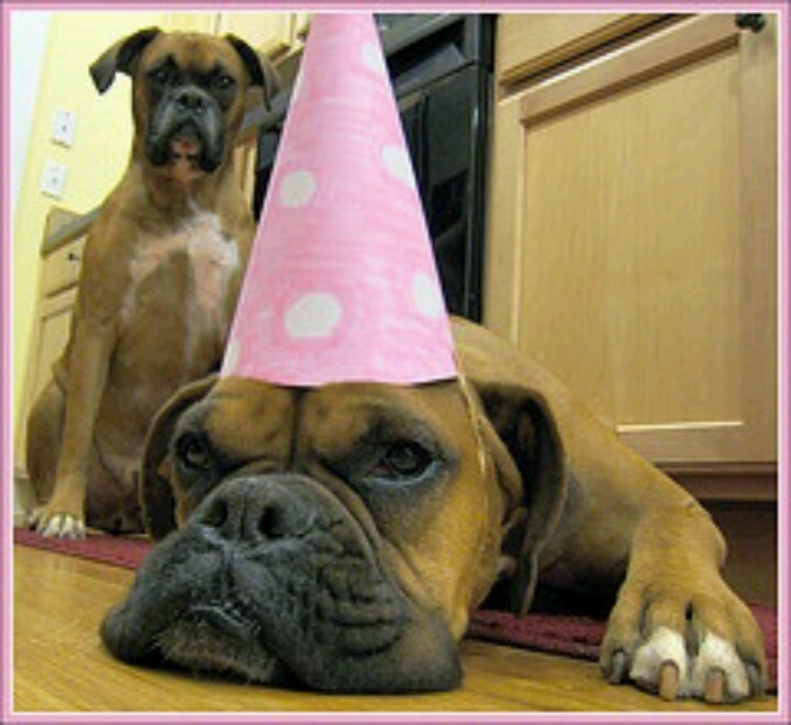 """It's my party and i'll sulk if I want to!"" Facebook.com/sodoggonefunny"