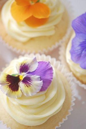 Pretty Cupcakes by Nishaa