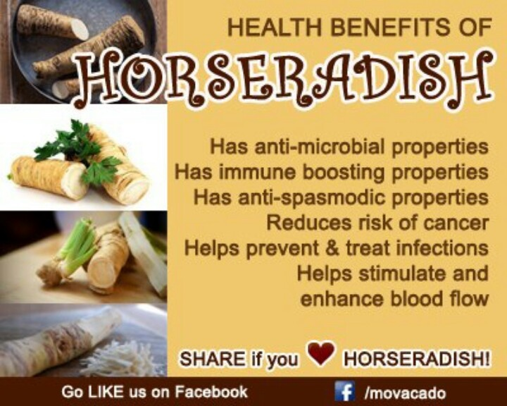 Horseradish I Have It Growong In The Vegetable Garden Good Stuff Health Natural Remedies