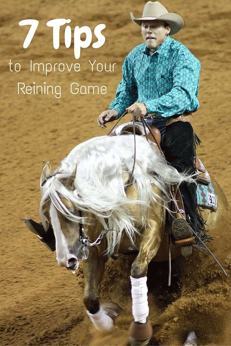 Improve your performance at your next horse show with these seven reining tips. Train your horse better in the practice pen and show him better in the show ring!