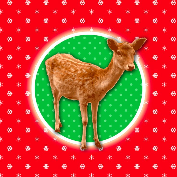 Hertje retro kerstkaart rood groen, verkrijgbaar bij #kaartje2go voor €1,89