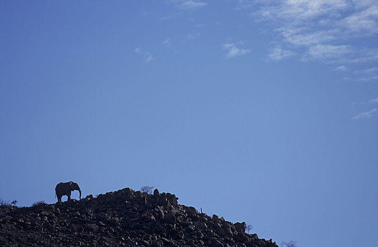 Hilltop behemoth