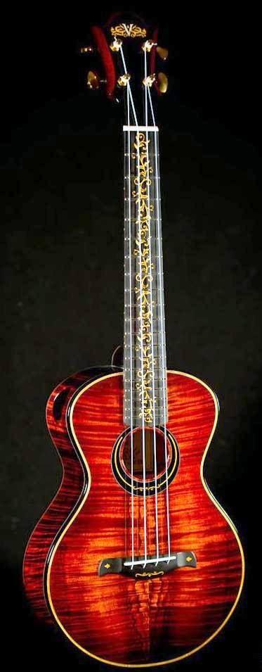 1622 Best Ukulele Images On Pinterest Guitars Banjo And