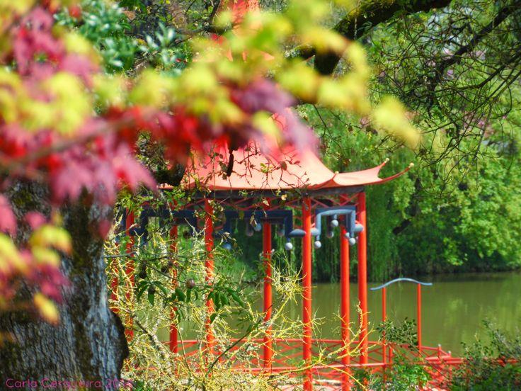 Buddha Eden - Jardim da Paz
