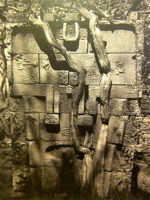 MONDOBLOGO: costantino nivola: lost in the hamptons