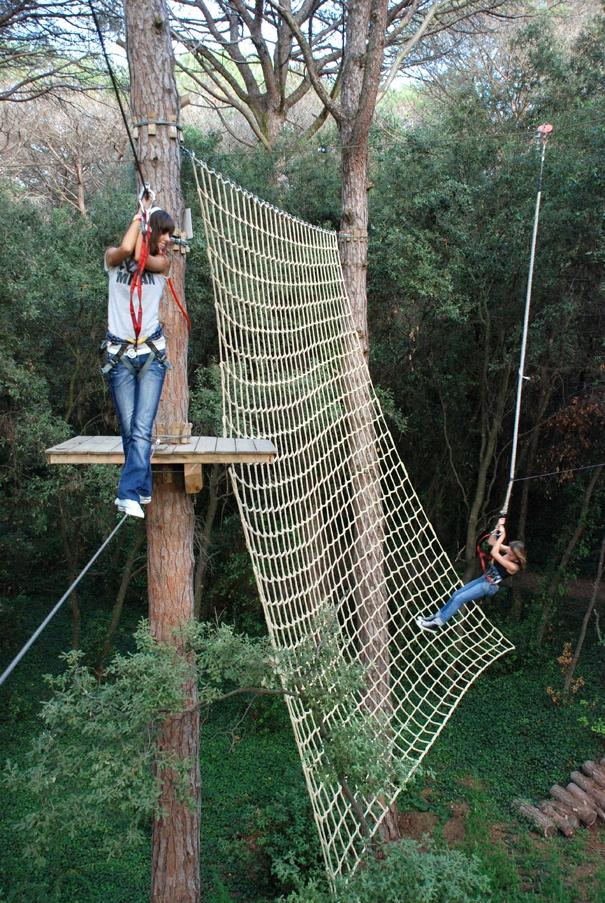 Liana del canopy