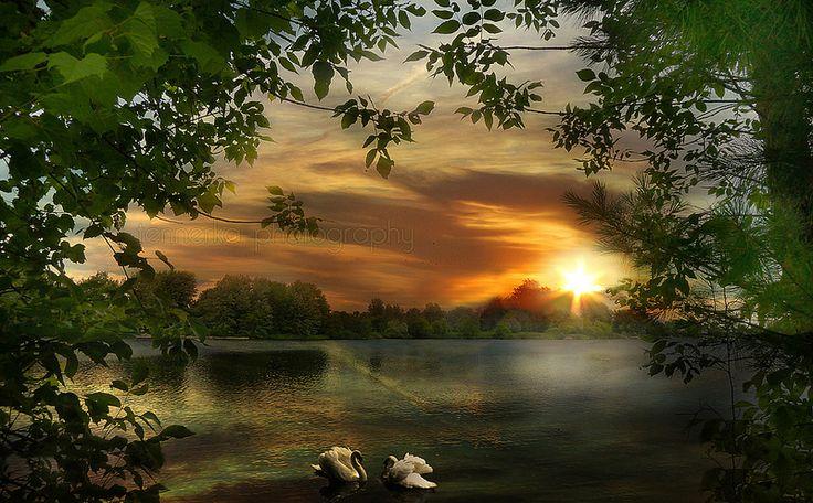 Meeting at sunset