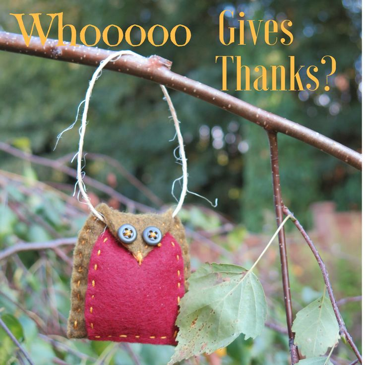Whooooo gives thanks? We do. For YOU! And we have a gift for you today.
