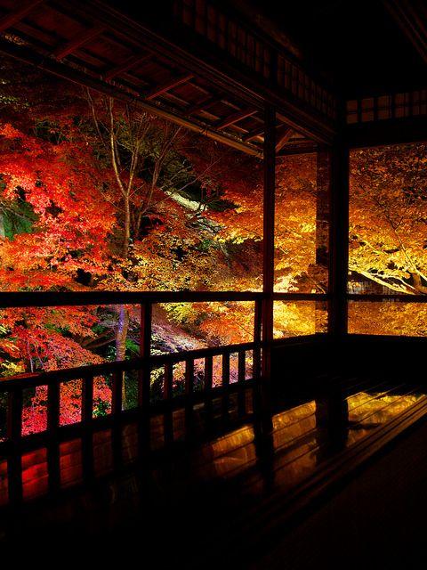 Rurikou-in Komyo-ji Temple in autumn, Kyoto, Japan #AutumnLeaves