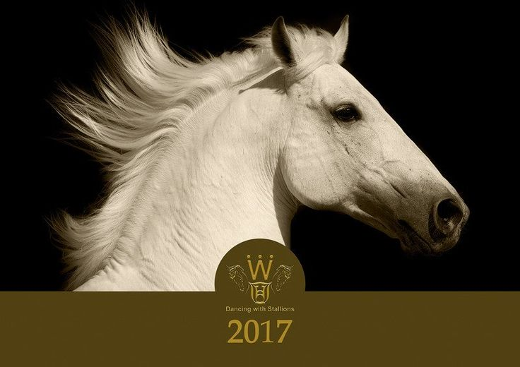 2017 Dancing with Stallions Calendar