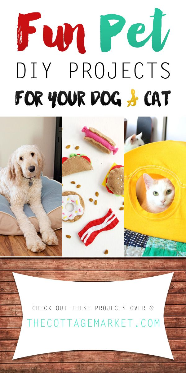Fun Pet DIY Projects for Your Dog and Cat - The Cottage Market You will find fun projects here for your pets! Cat Toys...DIY Dog Beds and so much more...all coming with a spot on tutorial! WOOF...Woof...MEEEEOW!!!!!!!!!!!