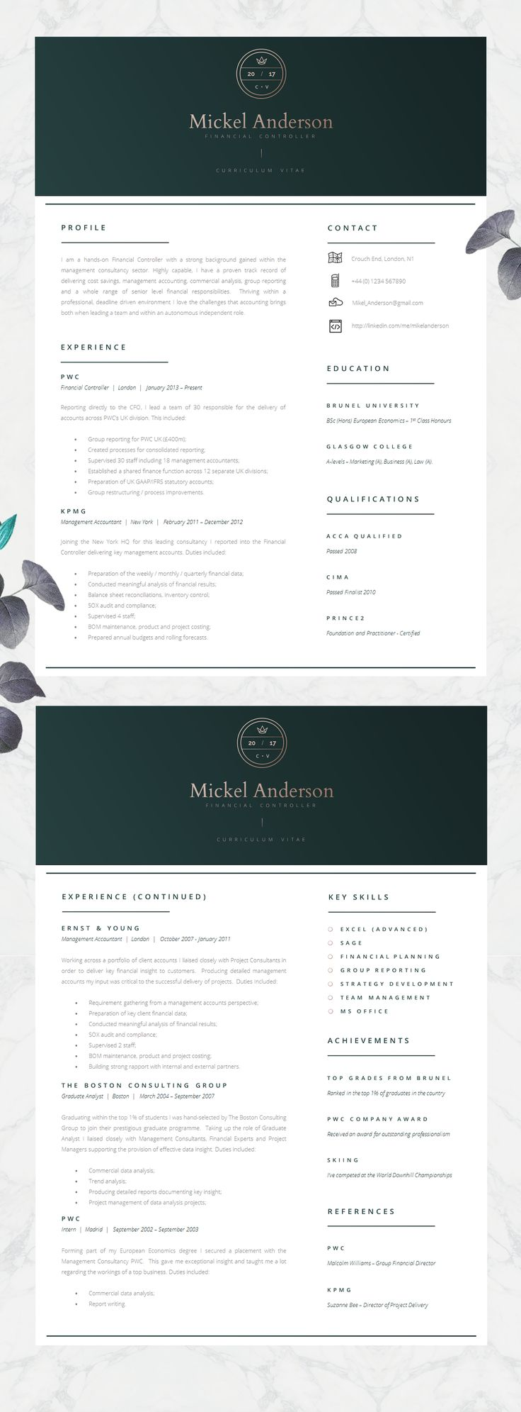 Professional CV Template Two Page Resume