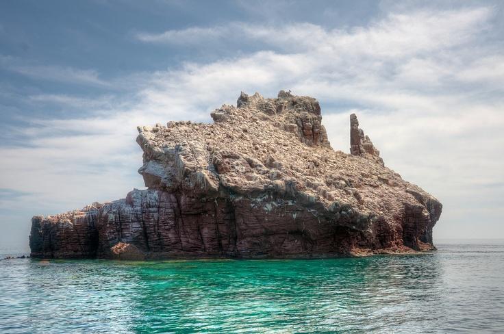 Baja California, Mexico.  http://www.worldheritagesite.org/sites/gulfofcalifornia.html