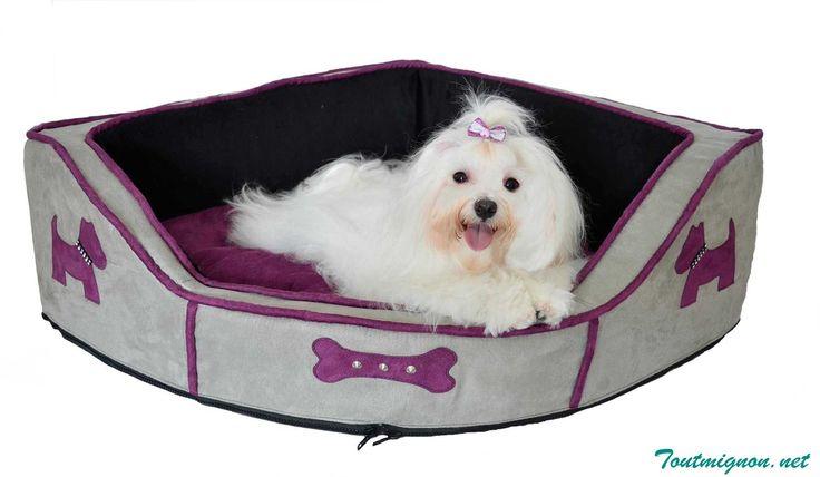 Mejores 46 im genes de camas para perros en pinterest camas para perros mascotas y accesorios - Accesorios para camas ...