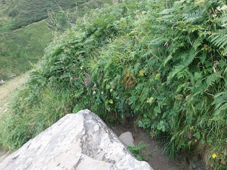 Na zpáteční cestě k Tintagel. Na některých místech je cesta opravdu velice úzká ... a ještě k tomu klikatá