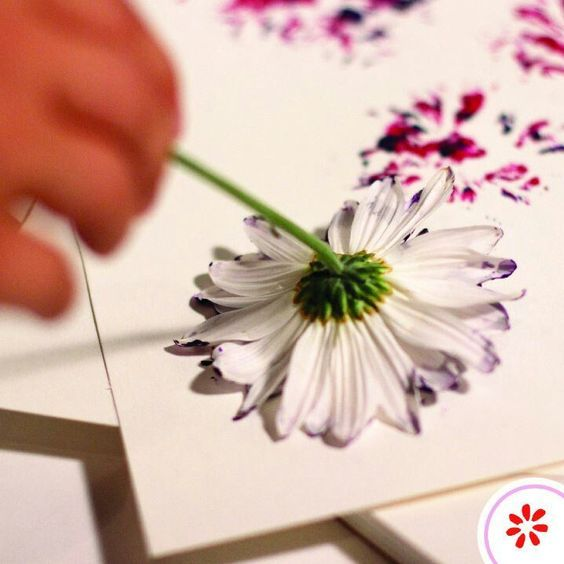 Use flower heads of different shapes as stamps to make cool watercolour style abstract flower print shapes on cards, paper, or fabric.: