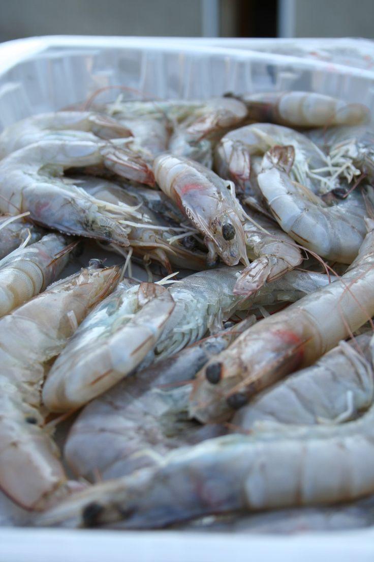 Crevettes sautées aux épices - Blog de cuisine créative, recettes / popotte de Manue