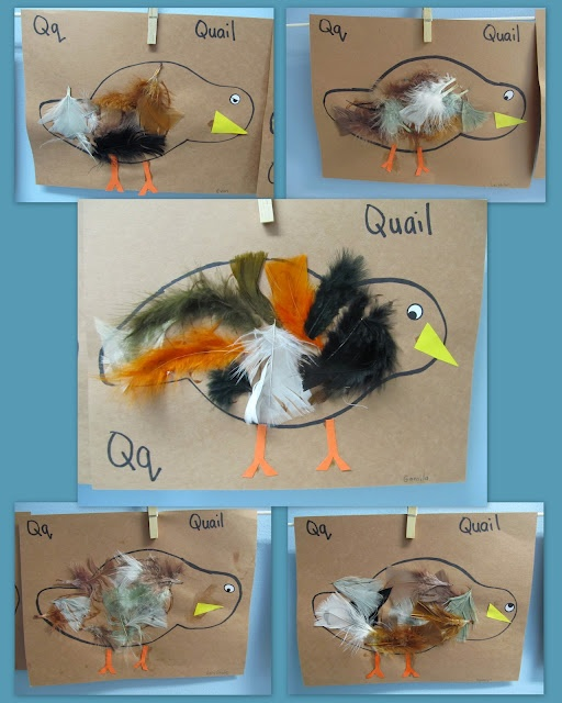 Qq is for quail