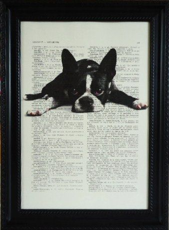 BOSTON TERRIER wall decor boston terrier ART wall hanging on an vintage dictionary art print housewares for your wall (34)