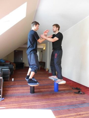 TrickBoard: trening wing tsun