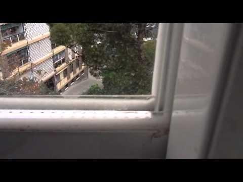 ▶ Desde la ventana de mi cocina - YouTube