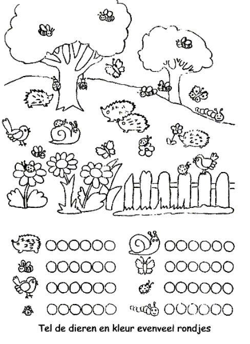 Tel de dieren en kleur evenveel bolletjes (voorbereidend rekenen).