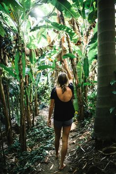 Explore this bamboo labyrinth in Rincon, Puerto Rico!