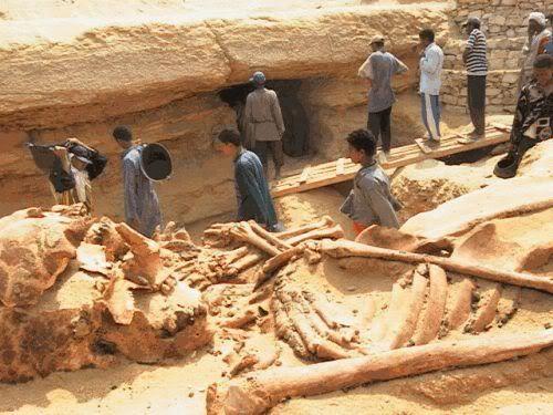 Città archeologico di Shahr_e_Sukhte situata in regione Sistan in Iran