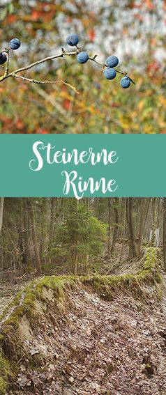 Steinerne Rinne nahe Weißenburg in Bayern (Altmühltal). Für einen besonderen Ausflug mit Wanderung in der Natur mit Freunden, Familie oder als Paar.