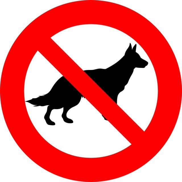 Oznaczenie informuje o zakazie wstępu ze zwierzętami do pojazdu przystosowanego do transportu zbiorowego. Naklejki powinny być umieszczone w miejscach...